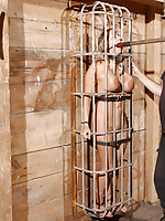 Trina Michaels makes a magnificent captive. She fits perfectly in the cage PD has prepared for her once he pulls her tits through the bars.