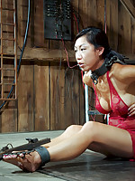 Tia Ling loves bondage almost as much as she does service. She wants to please but with all of these requests it will be a tough job.